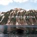 BP Oil Spill: In An Absolute World