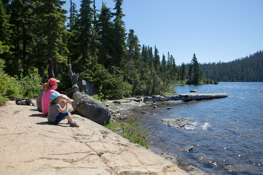 Talk nerdy to me vancouver island road trip for active families - Keep mites away backyard hiking ...