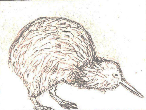 Kiwi Bird Sketchbook Drawing. | Nat Griffin | Flickr