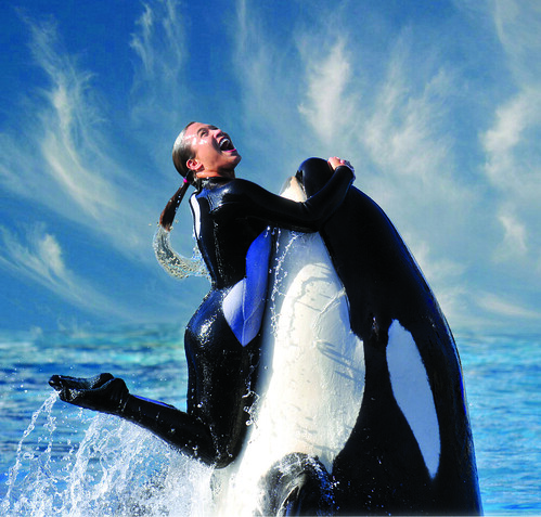 SeaWorld San Diego | by Smart Destinations