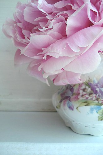 Peonies in Vase | by such pretty things