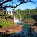 Falling Waters of Iguazú