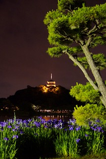 Sankeien garden at night, Yokohama | by julesberry2001