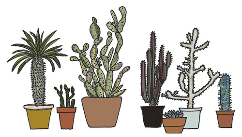 Prickly doodles | by Geninne