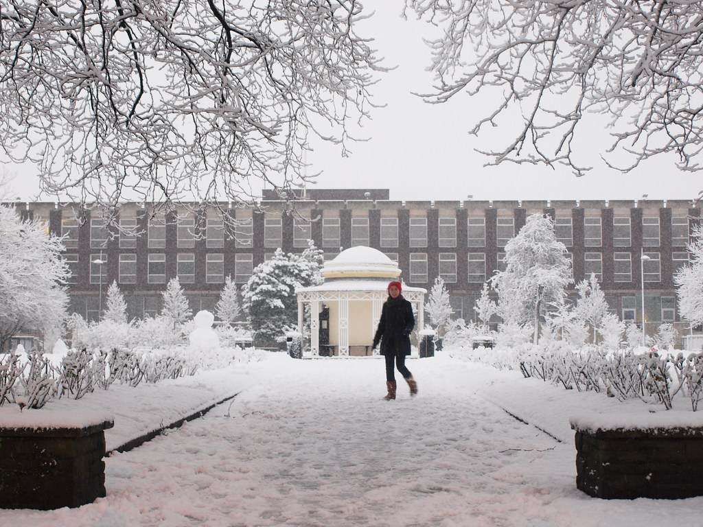 Abercromby Square | Everyone left the university early ...