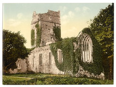 [Muckross Abbey, Killarney. County Kerry, Ireland] (LOC) | by The Library of Congress