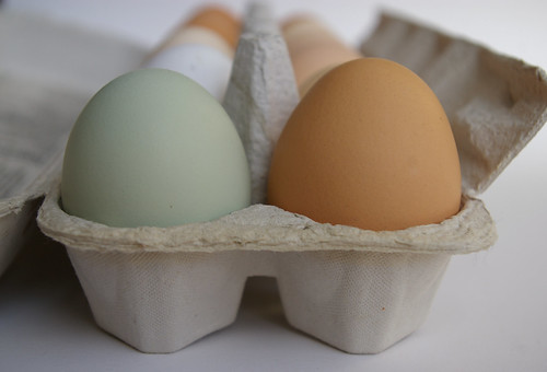 Farm fresh eggs | by Patent and the Pantry