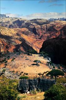 Socotra, Yemen Yemen