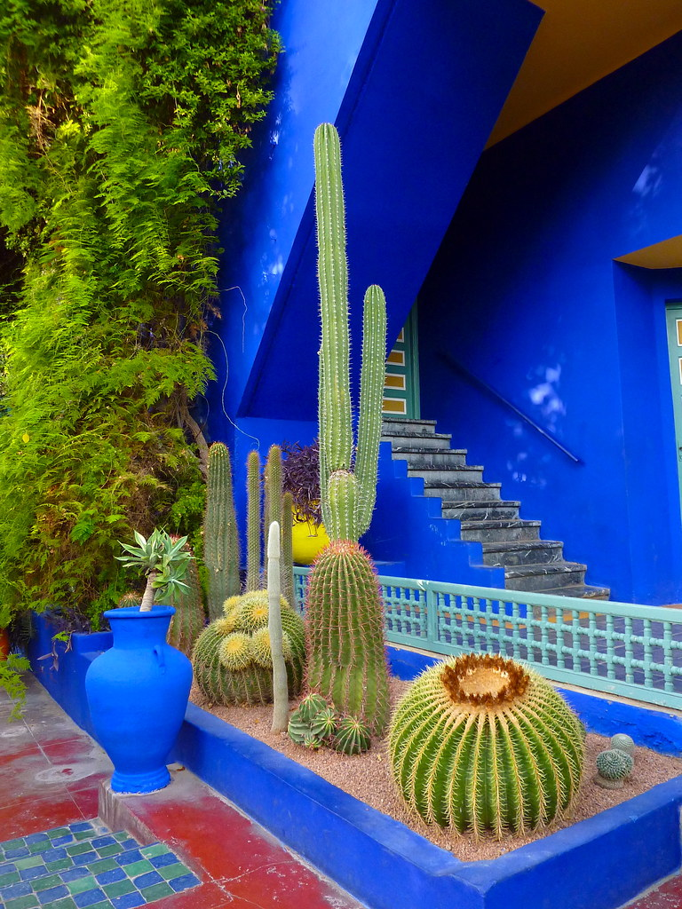 Jardin majorelle marrakech the majorelle garden for Jardin yves saint laurent maroc