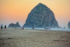 Cannon Beach, Oregon by Strober