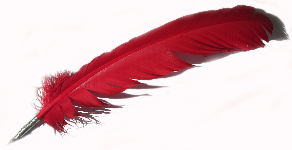 quill pens red made by turkey feather quill pen with a