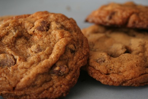 Butterscotch chocolate chip cookies. | by amyb_w
