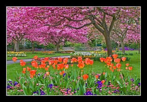 Town Gardens, Swindon, Wiltshire