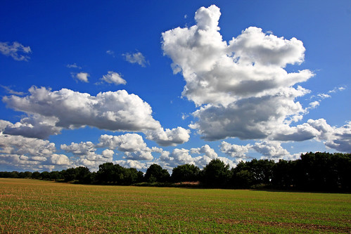 Oh for summer skies again! thank you for over 1,200 views and 200 comments | by natworld50 thanks for + 1.7 million views