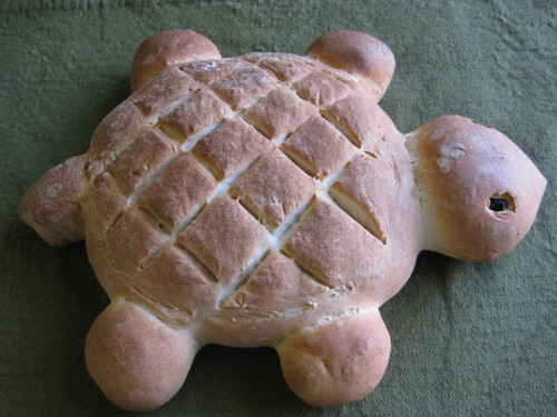 Turtle Bread | Flickr - Photo Sharing!