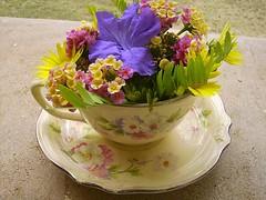 Happy Thursday Flower by Santinha - Casas Possíveis