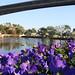 Flower Display at Epcon Disney World