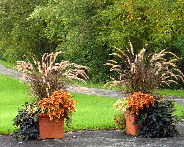 Driveway planters september 2006 again planters filled for Gros pot fleur exterieur