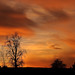 Red Sky at Night A Photogs Delight