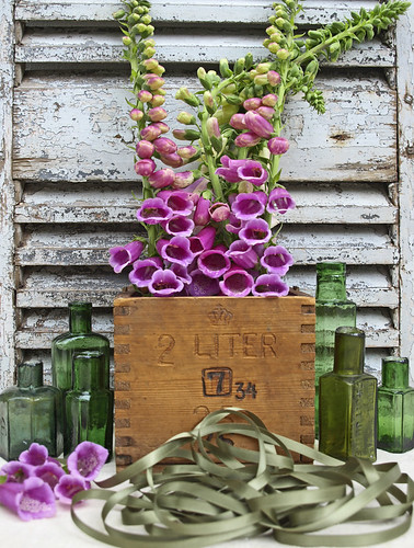 Foxgloves | by Of Spring and Summer