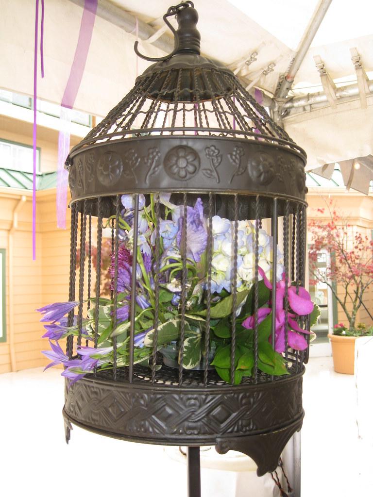 Wedding Decor Love Bird Theme Bird Cage Misty Damico Flickr