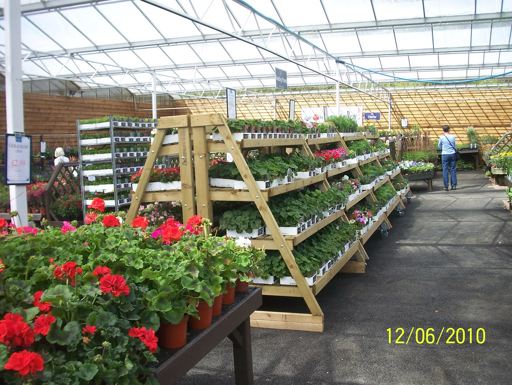 Plant stands at Stansted Garden Centre | More ideas ... | Leonora ...