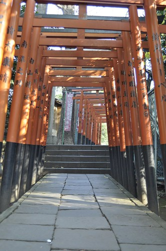 Ueno Park Torii | by Alex Carbune