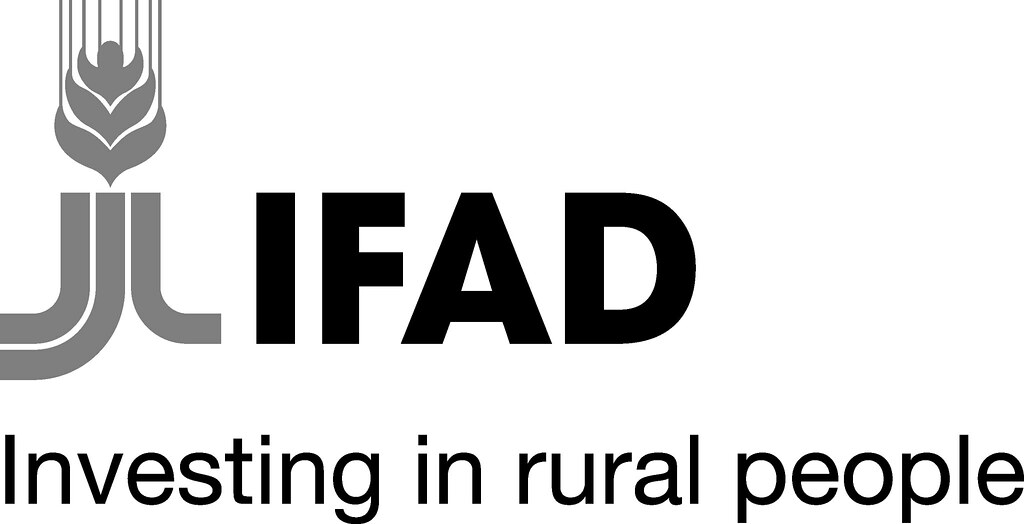 Get Free Credit Report >> IFAD logo | (photo credit: IFAD). | ILRI | Flickr