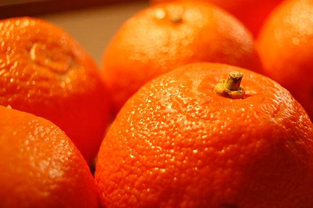 Seville Orange Marmalade | Flickr - Photo Sharing!