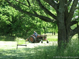 Time to Cut Hay 8 | by Farmgirl Susan
