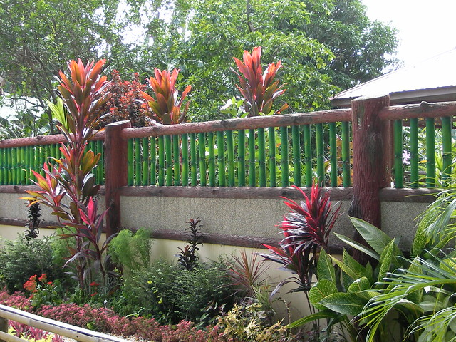 Tropical garden design romblon philippines flickr for Garden design ideas in philippines