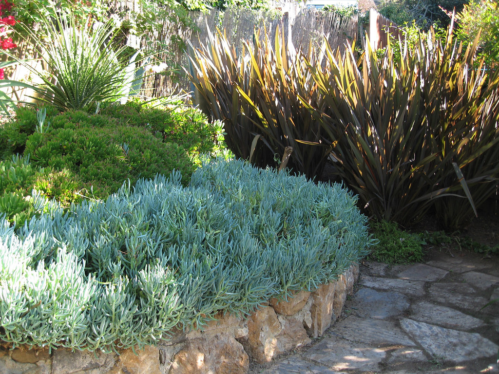 Blue chalk sticks as color texture accent garden by for Sticks and stones landscaping