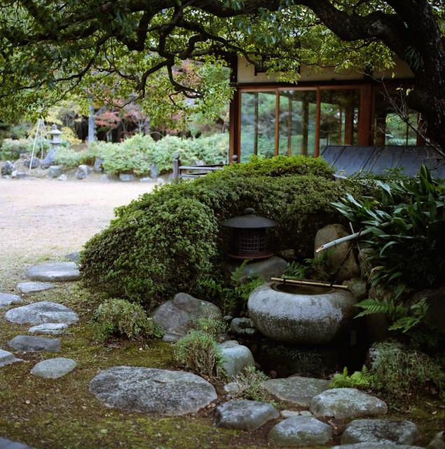 Garden hasselblad 500c m carl zeiss planar cf80mm f 2 8 for Free japanese garden designs