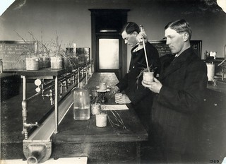 Students testing soil fertility | by OSU Special Collections & Archives : Commons