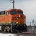 BNSF 6243 ~ Coal Train