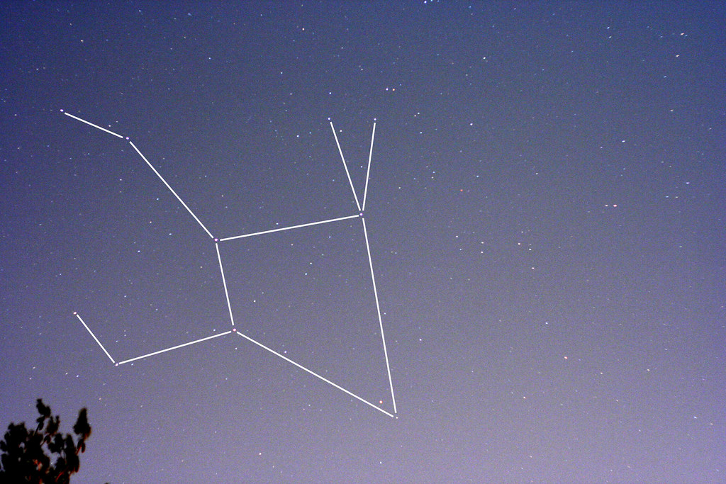 the constellation Lepus | A wide angle shot of the ...
