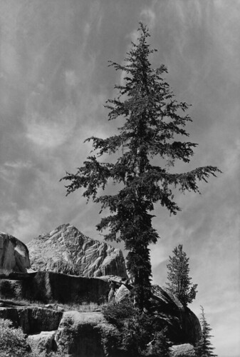 Ansel adams the mural project 1941 1942 an unnamed peak for Ansel adams mural project