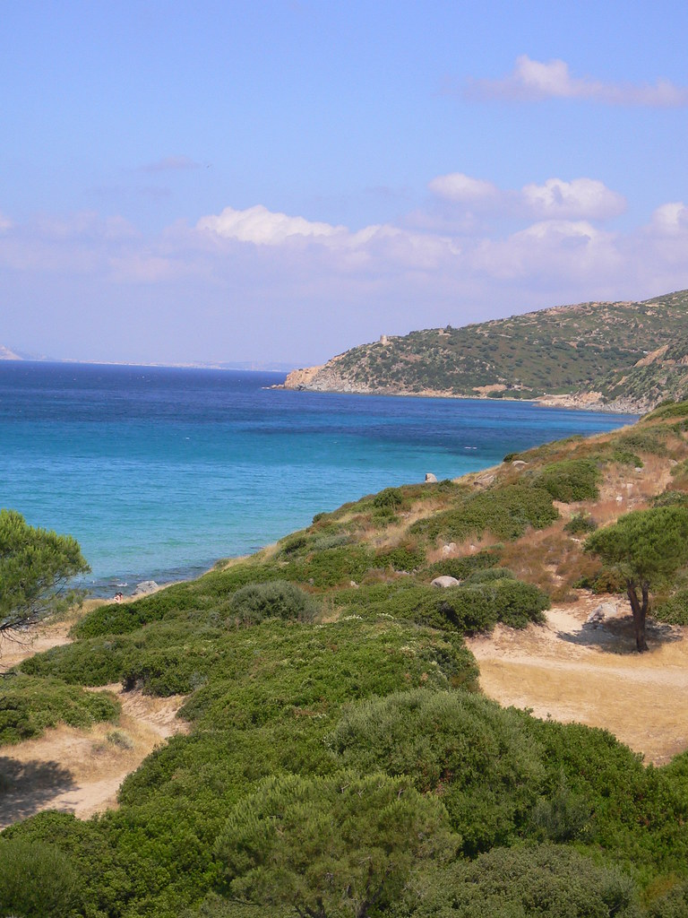Sardegna la macchia mediterranea lungo la costa la macch flickr - La mediterranea ...