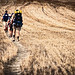 The narrow path | La senda estrecha