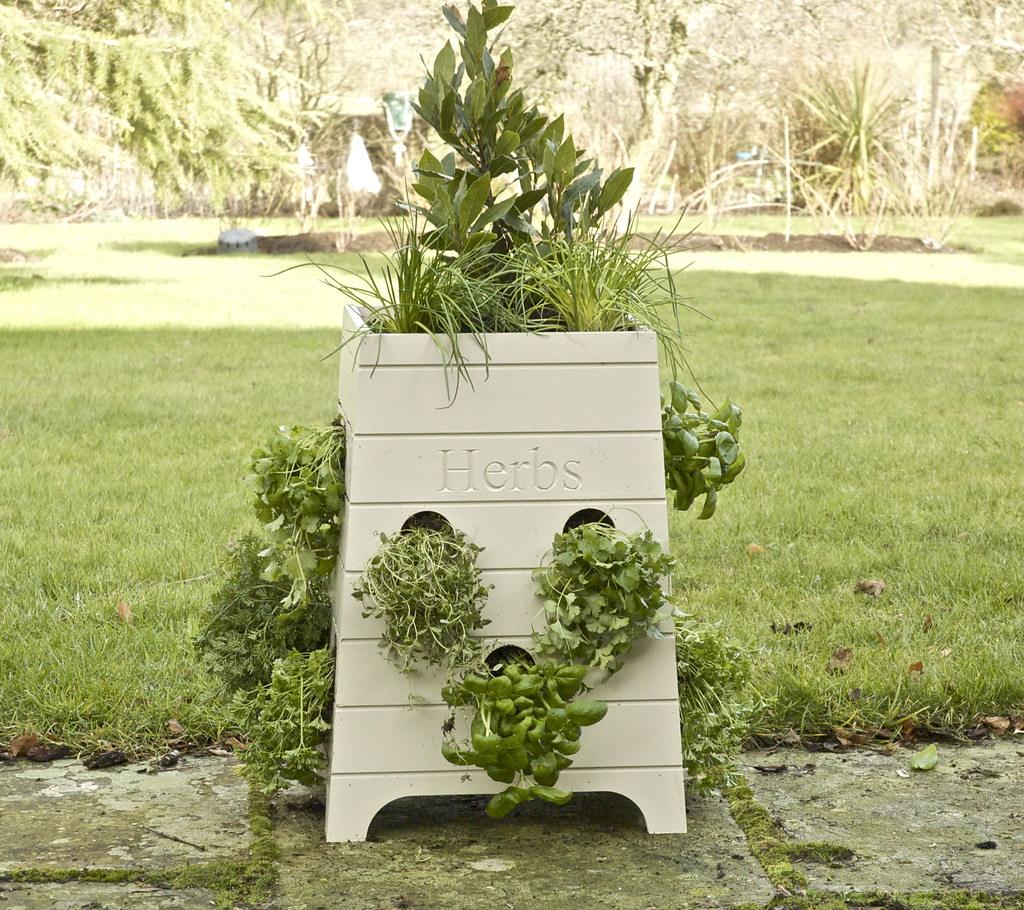 sparrow finch beehive herb planter what a way to grow yo