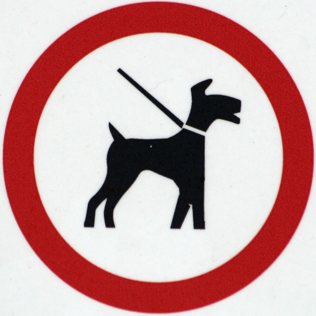 Image result for dog on lead sign