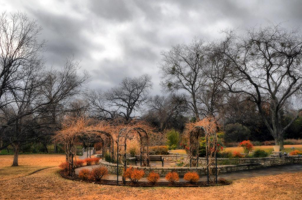 Fwbg Fort Worth Texas Botanic Garden Tree Winter Barren Br Flickr