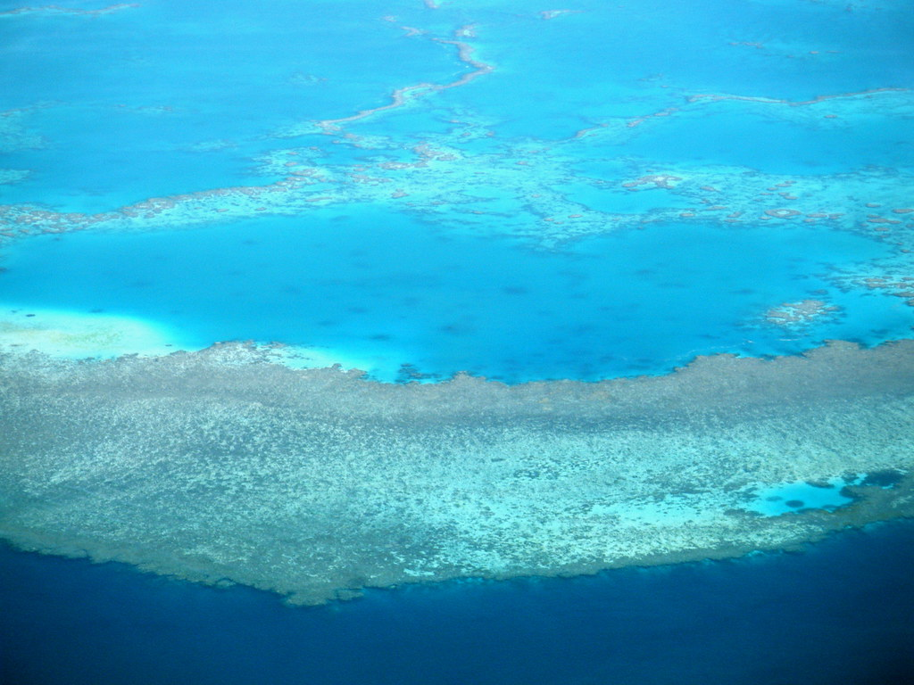 Amazing Great Barrier ...