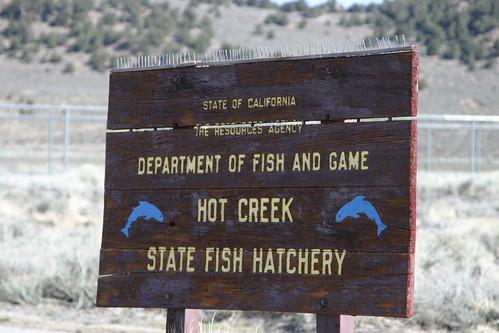 Hot Creek State Fish Hatchery Ray Krebs Flickr