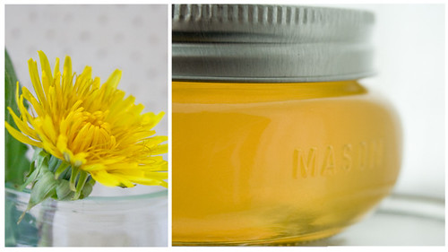 Dandelion Jelly | by Dayna McIsaac