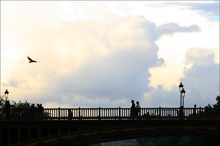 With Complete Peace of Mind ~ Pont au Double ~ Paris ~ MjYj | by MjYj ~ IamJ