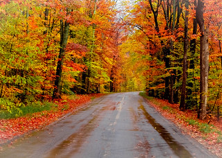 Autumn Road | by Pure Michigan