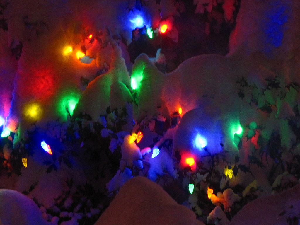 Christmas lights in the Snow 8384 | Christmas lights give of… | Flickr