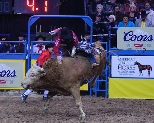bull riding injury risks Rodeo clowns are the most injured non-contestants in a rodeo at a 774% injury rate who needs rodeo insurance it bull riding competitions the injury risks.