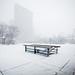 Toronto's 5cm Snowpocalypse
